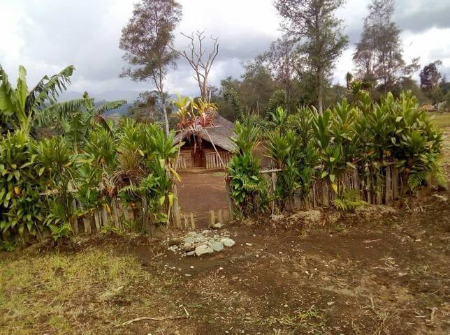 Traditional Engan Men's House (Akalianda)