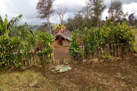 Traditional Engan Men's House (Akalianda)