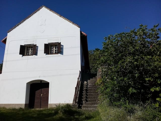 Characteristic house by Balaton - Badacsonytördemic