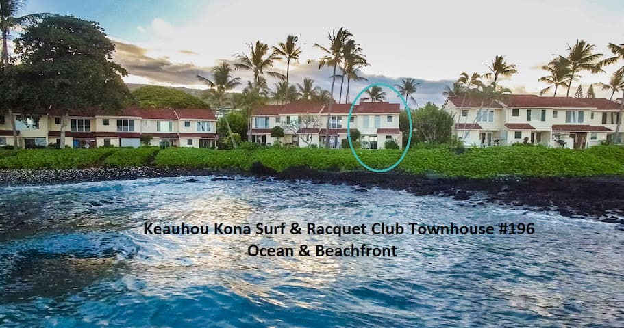 Amazing Oceanfront - Kona, Hawaii!  - Kailua-Kona - Apartment