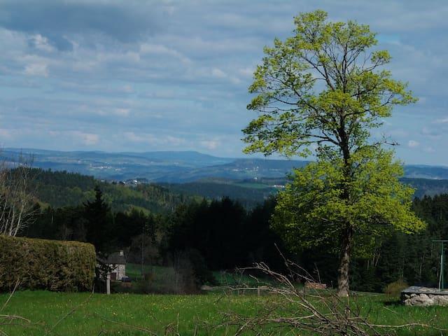 1 Chambre - La Gaillardinette - Saint-Jeures - Dům