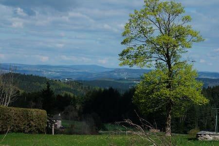 1 Chambre - La Gaillardinette - Saint-Jeures