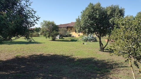 Roby's house, e sei in relax (4 L)