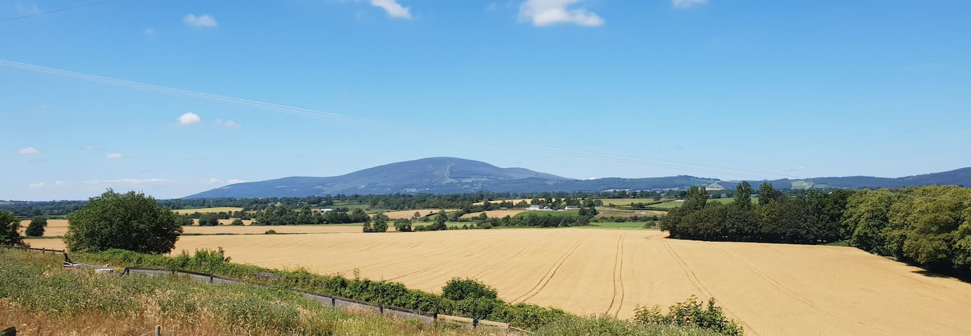 Slievenamon view