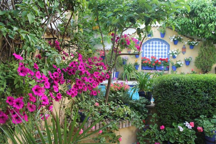 Habitación privada en Casco Histórico - Córdoba - Haus