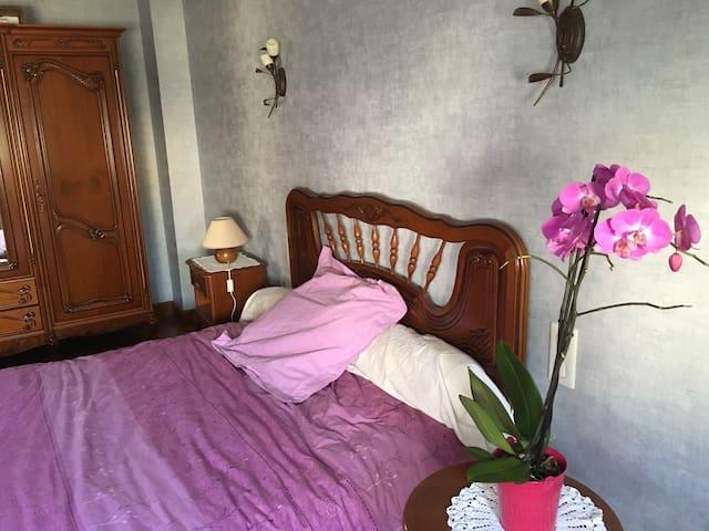 Grand chambre au calme côté jardin - Albi - House