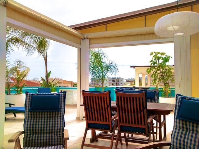 """The Palm Terrace"" 2BD Penthouse - Livadhia"