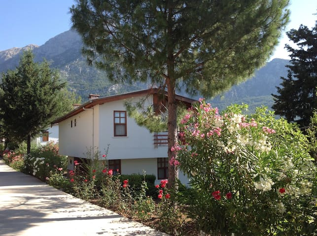 Beycik mountain villa. Turkey. - Kemer
