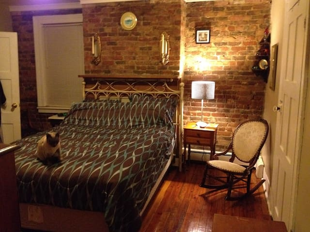 Cozy Apt w/ charming 1830's detail