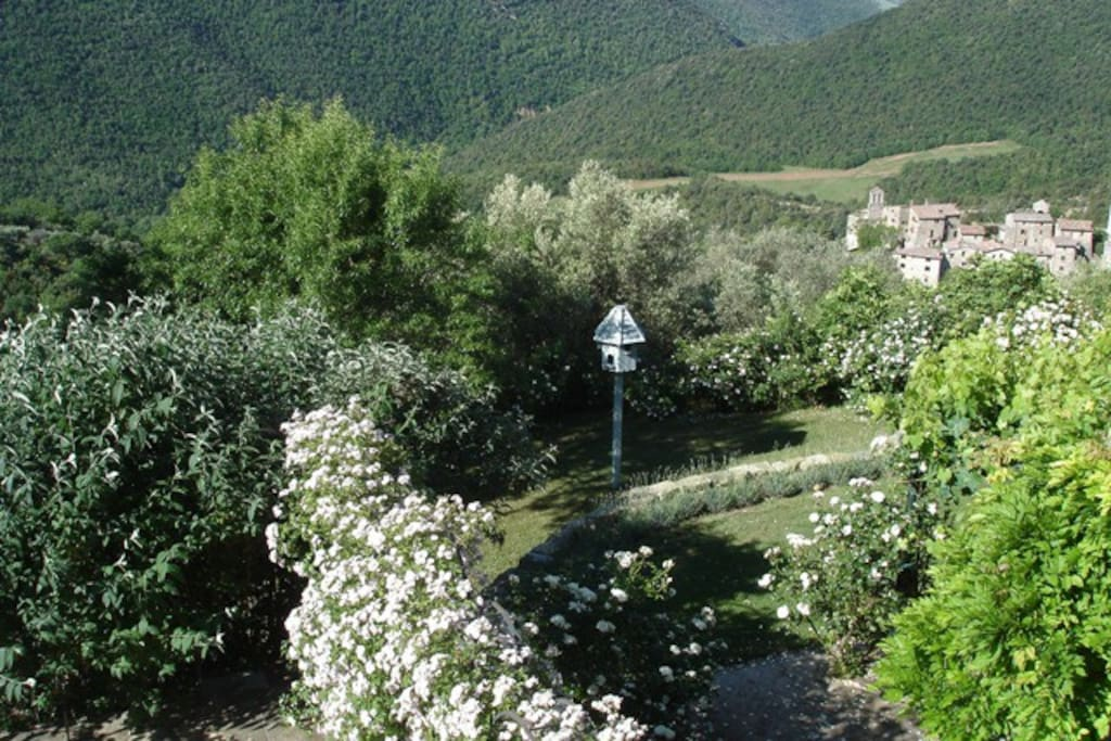 This is a view of the gardens at Prato di Sotto with the ancient borgo of Santa Giuliana below