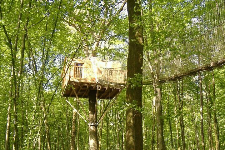la cabane sous-bois à 8 mètres de hauteur