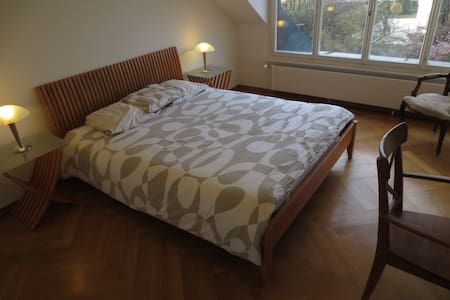 Great room with lake view in private house - Cologny - House