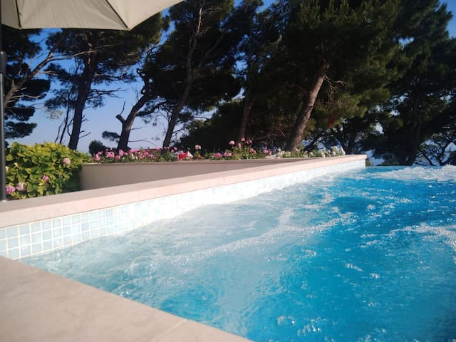 Makarska Hills 2+2 apartment/ private plunge-pool.