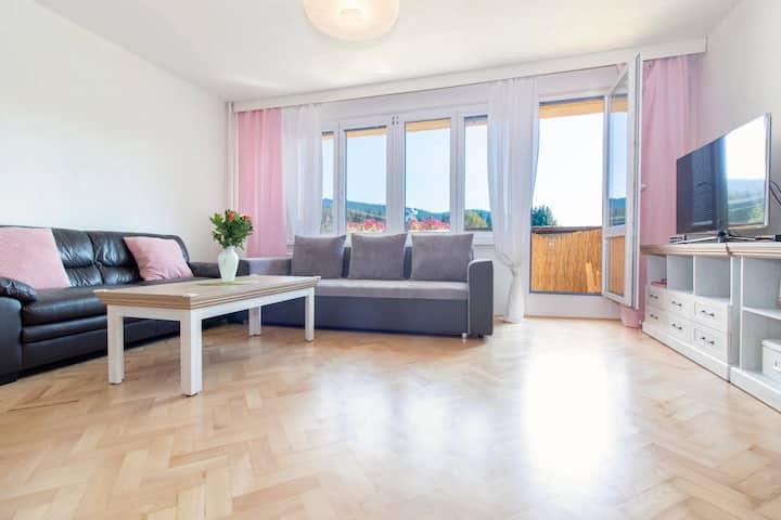 Apartmán Staré Hamry