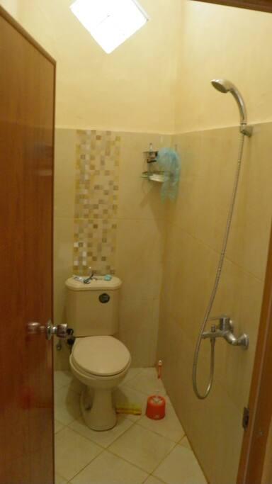 clean & elegant shower bathroom