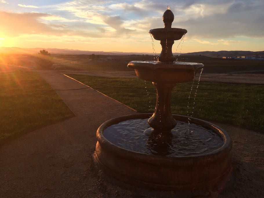 Sunset fountain views