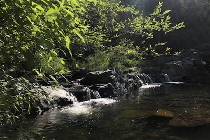 Peaceful Sound of a Creek 2