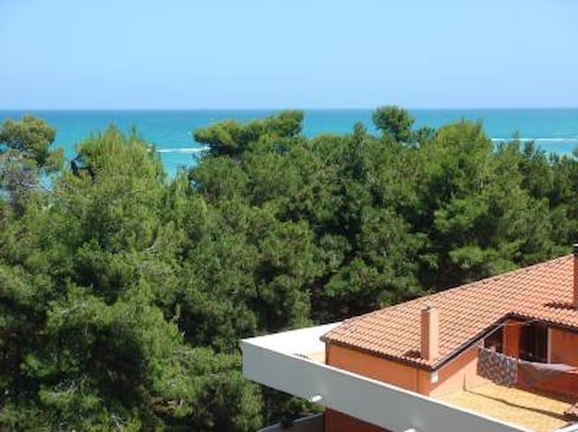 Apt Montesilvano 50m from the sea