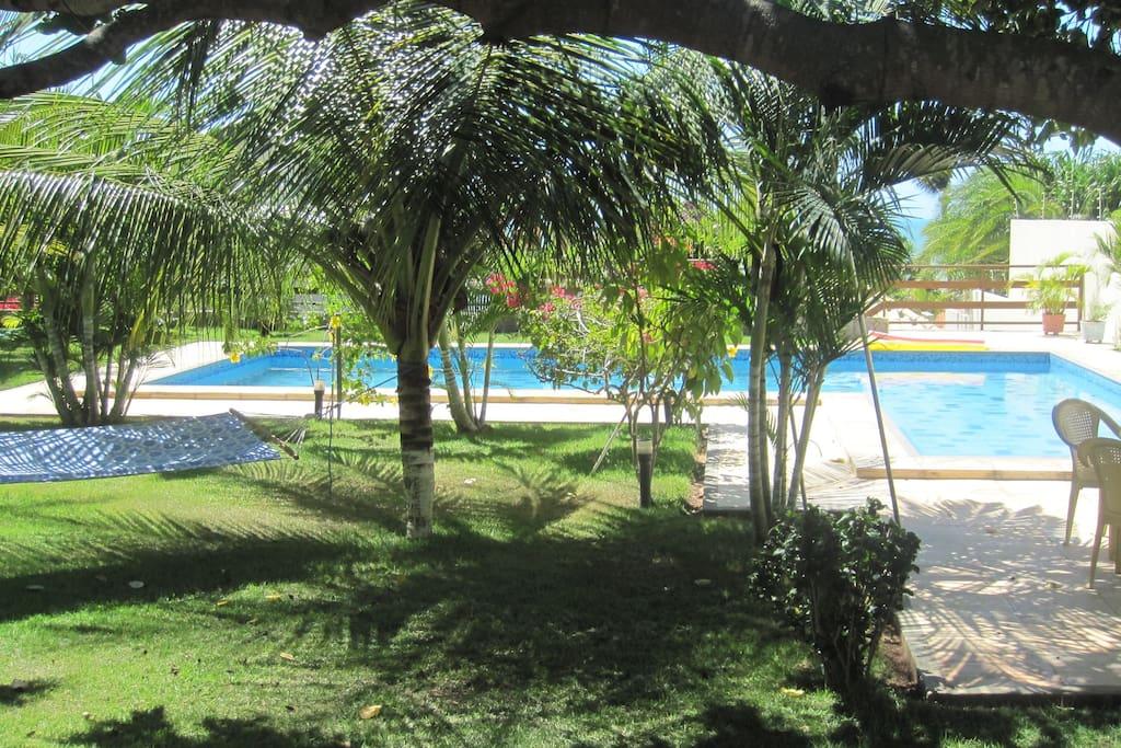 großer Pool im tropischen Garten