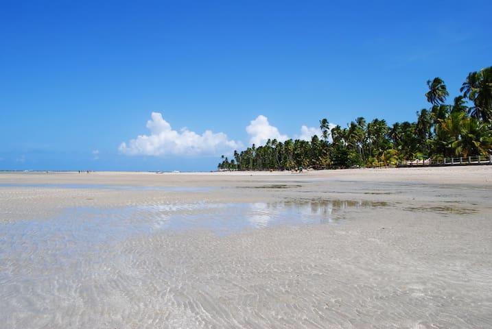 Paraíso para Toda a Família em Carneiros/PE - Praia dos Carneiros - Dům