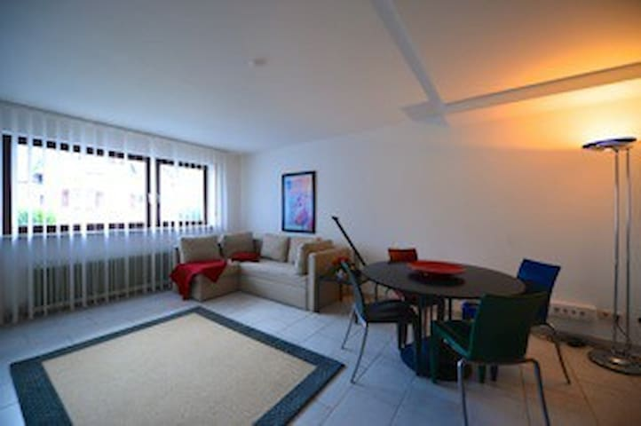 Modern One-Bedroom Apartment - Baden-Baden - Daire