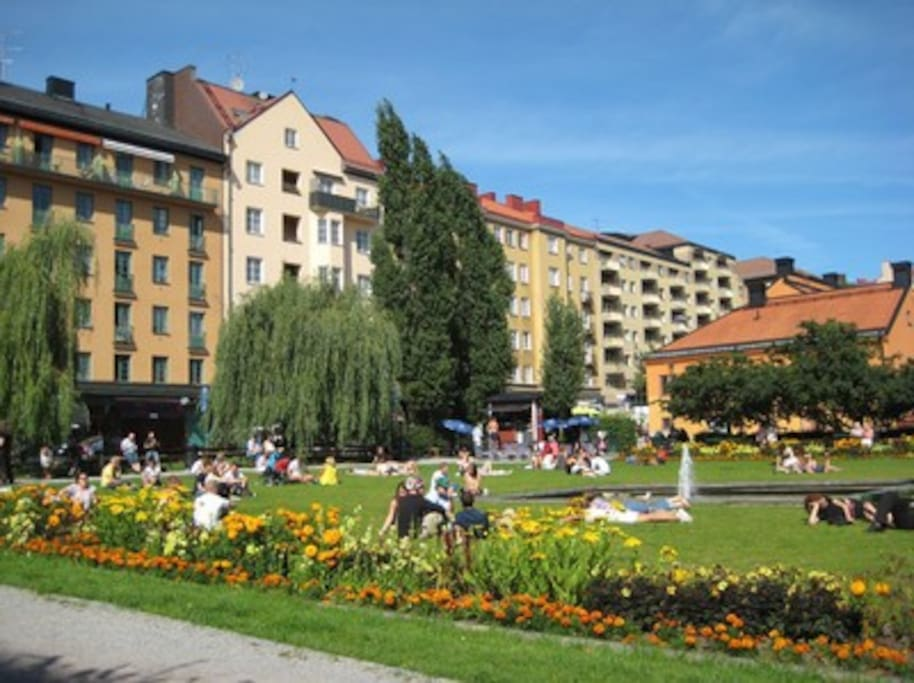 Nytorget, with several restaurants, cafés and shops just two blocks away