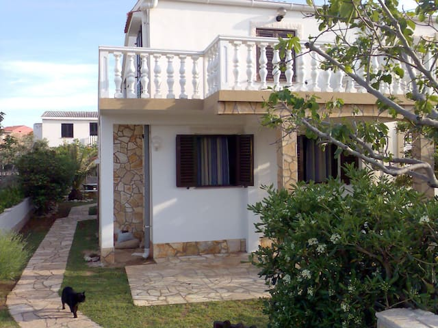 Apartman Komar Povljana, Island Pag - Povljana - Apartment