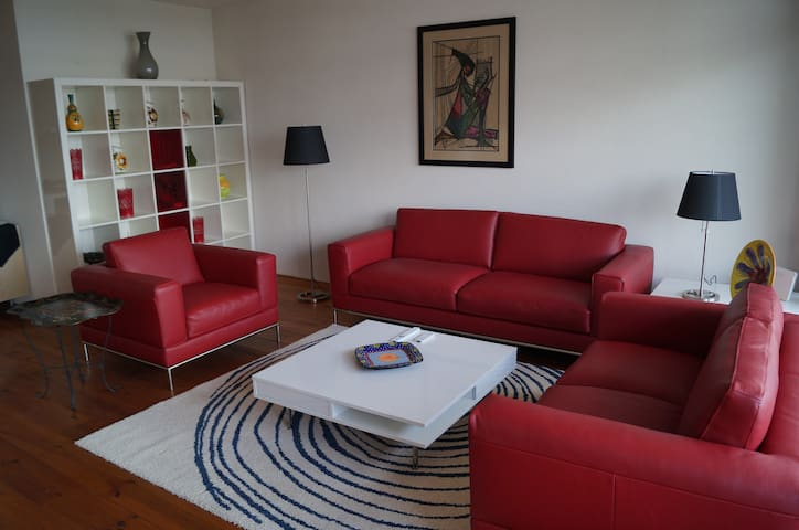 Split Level Apartment - Alphen aan den Rijn - Apartmen