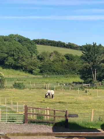 Pelham Cottage - Wey Meadow Cottages & Stables