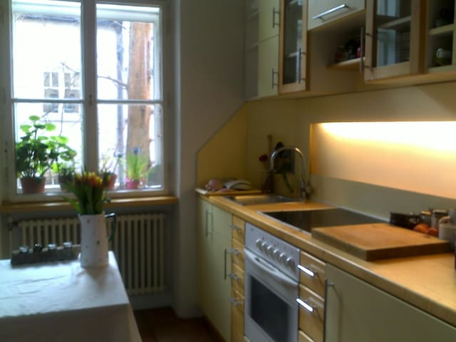 Charming two room Belle Epoque flat - Vienna - Appartamento