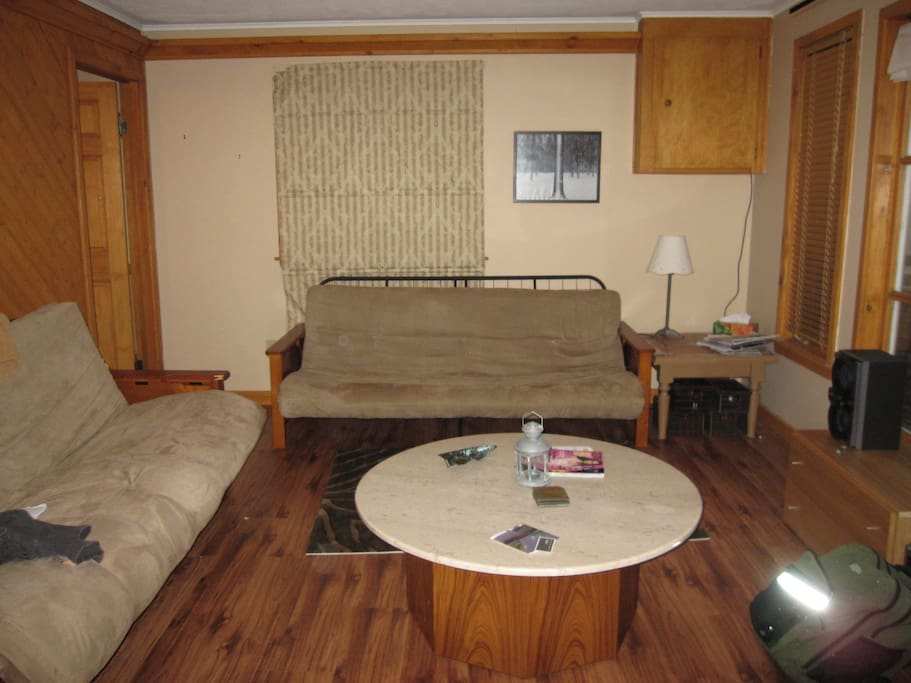 Living Area- Great conversation place and the couch folds out a a double bed.