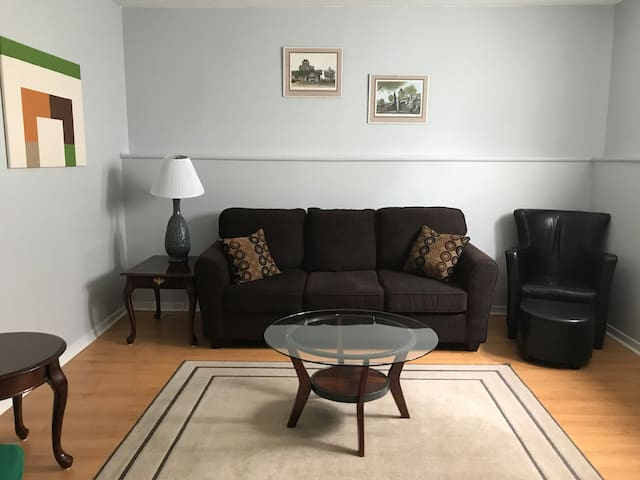 Bright 1 Bedroom w/ Pull Out Couch in Living Room