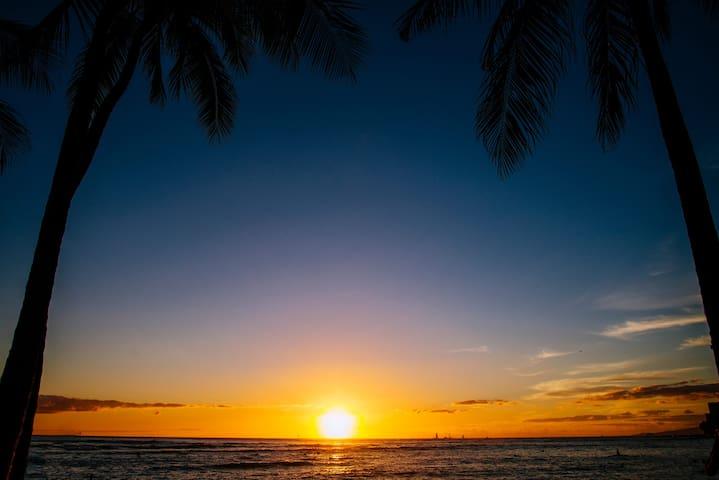 Gorgeous Sunset on the Beach