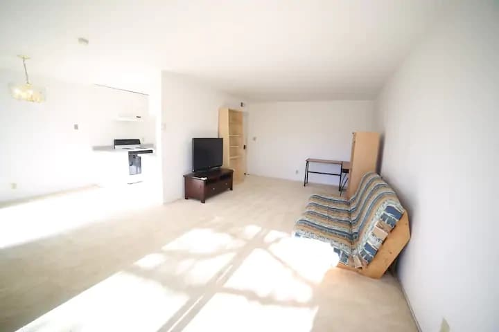 Entire 3B1B apartment in SF Bay area