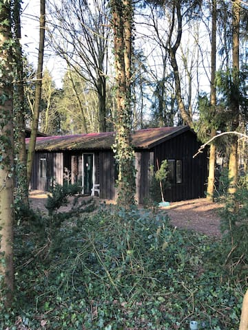 Bovensmilde houten huis op erf