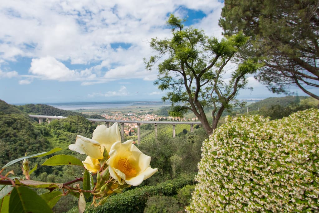 Casa Gelsomino - the view