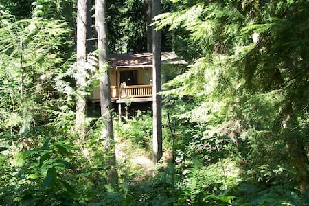 Cozy Cabin in the Forest - Olympia - Kabin