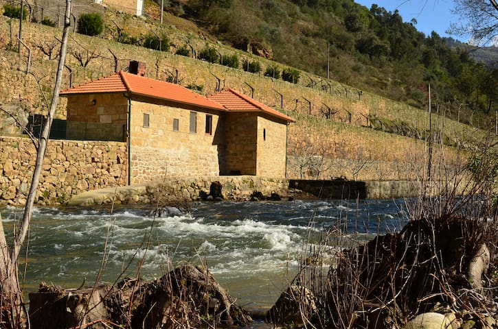 Mill House - Quinta de Recião - Lamego