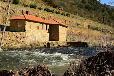 Mill House - Quinta de Recião - Lamego - 别墅