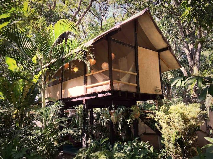 NoMames Wey eco-cabaña sobre alberca, Jalcomulco