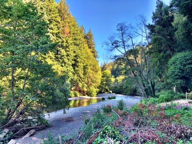 Riverbird Retreat on Austin Creek, Cazadero