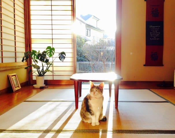 ❤️Beach Homestay Surf Japanese Home  ❤️江ノ島+鎌倉