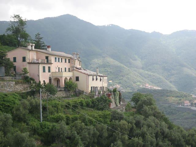 Villa Antica Cinque Terre 1 - Levanto - Apartment