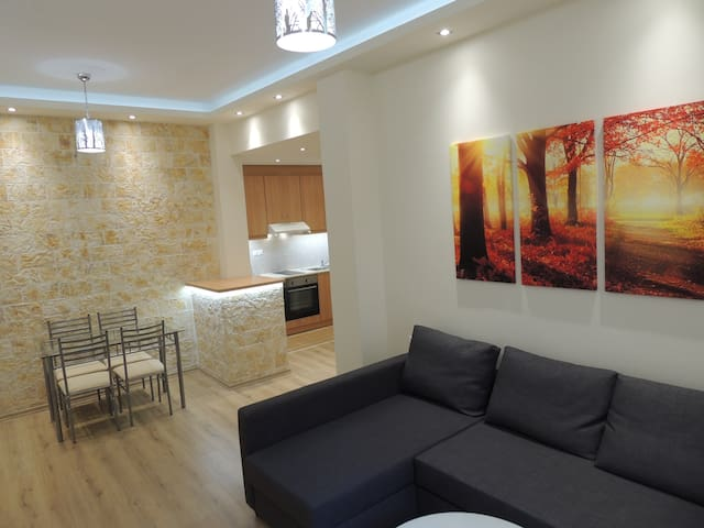 Luxurious apartment in the center Acropolis area