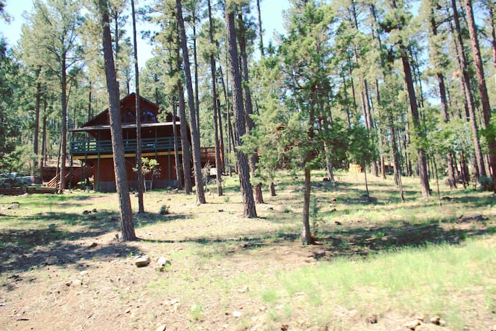 This is a view of the cabin from the street. Wide open view of the mountains from the back deck. Deer, elk, birds and other wildlife can be spotted roaming this area.