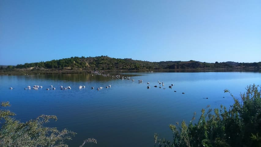 Superbe duplex avec vue étangs 60m2 - Peyriac-de-Mer, Occitanie, FR - Casa