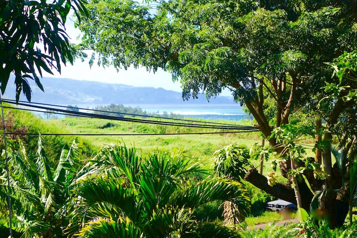 Mango Tree House @ Mangolani - Paia