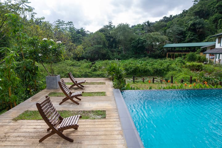Apartment on the edge of the Sinharaja Rainforest