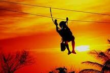Zipline in the Sunset at Gumbalimba Park 3 minute walk down the Beach