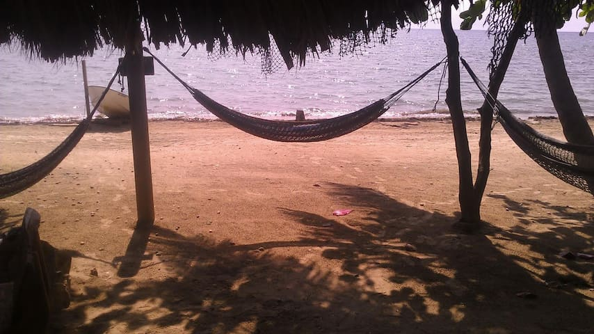 Relax on the Beach in a Hammock